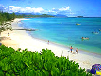 honolulu island tours