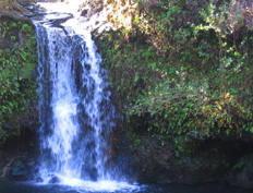 maui waterfalls helicopter tours