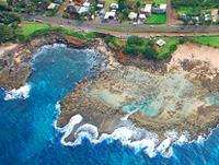 Sharks Cove Helicopter Tour